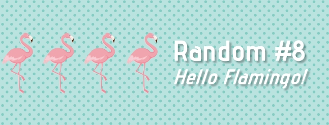random-flamingo-titre