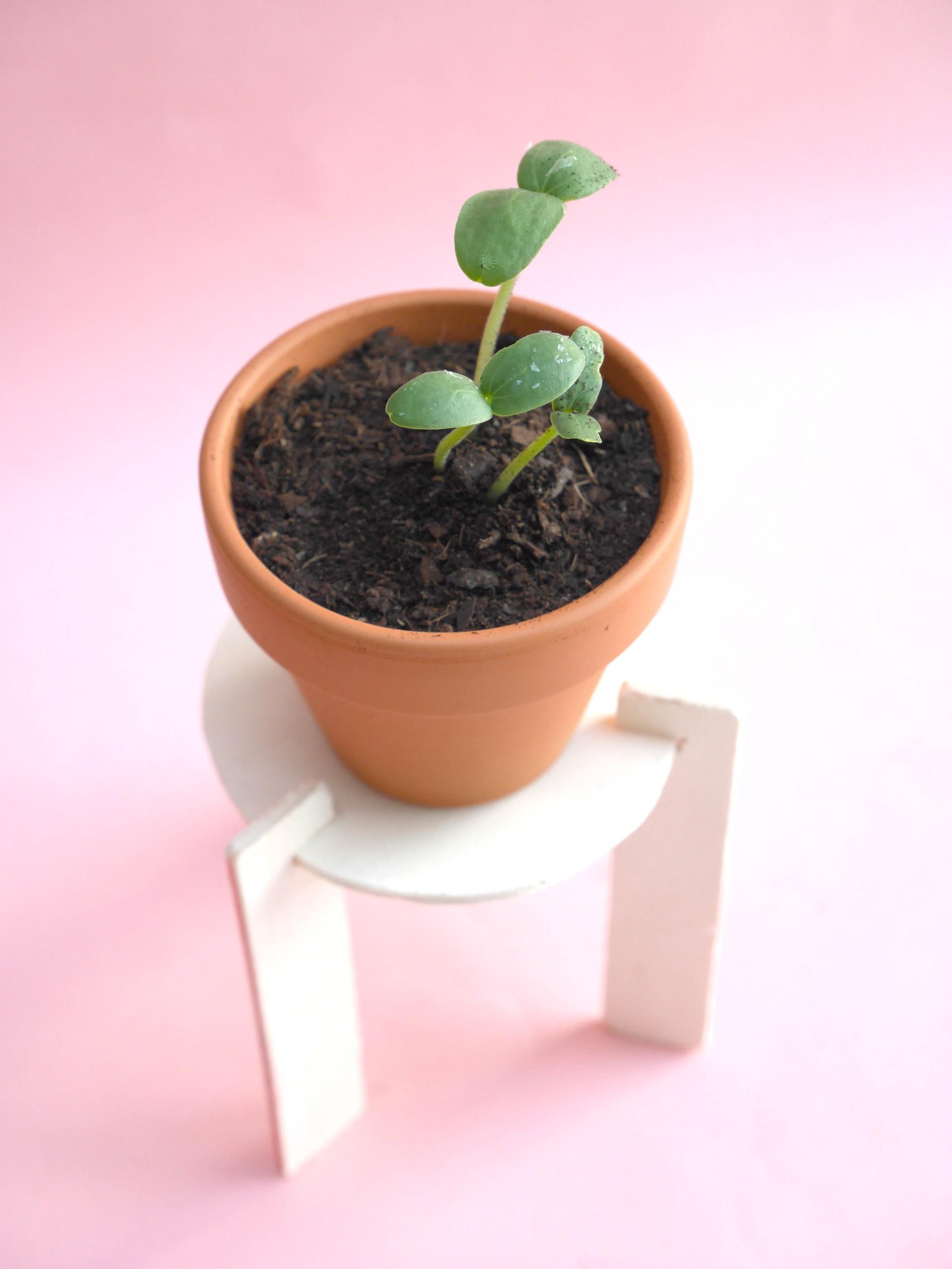 DIY-loiciaitrema-porteplante-10