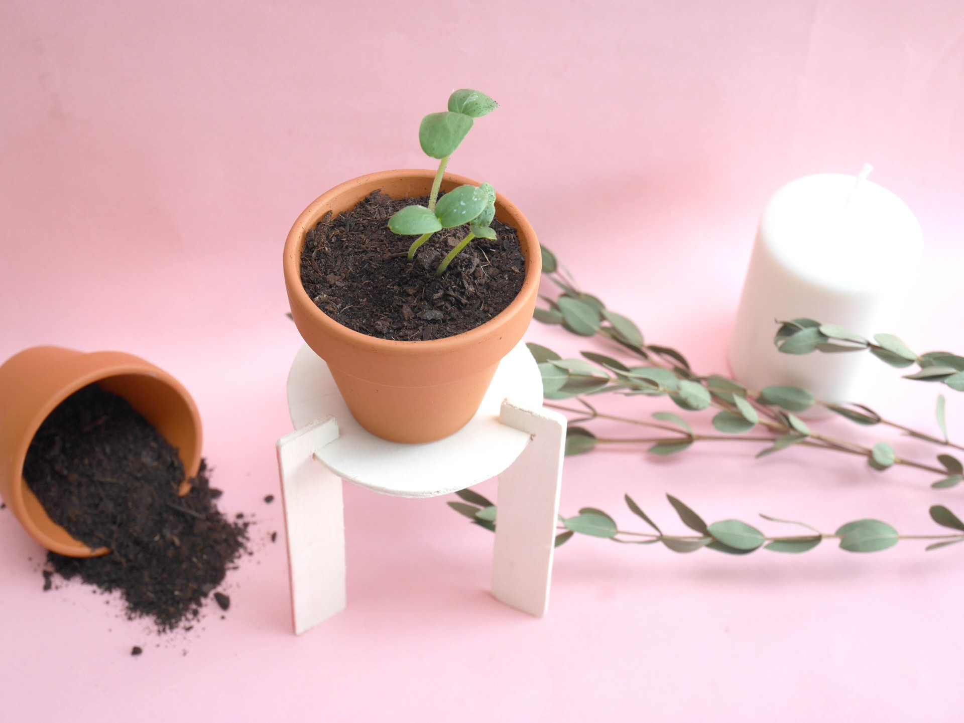 DIY-loiciaitrema-porteplante-12
